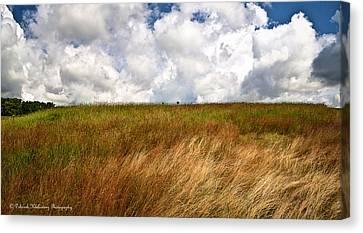 Leaden Clouds Over Field Canvas Print by Deborah Klubertanz