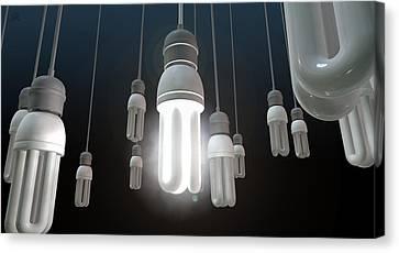 Leadership Hanging Lightbulb Canvas Print by Allan Swart