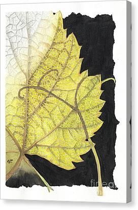 Nature Canvas Print - Leaf by Elena Yakubovich