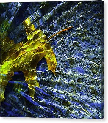 Leaf In Creek - Blue Abstract Canvas Print by Darryl Dalton