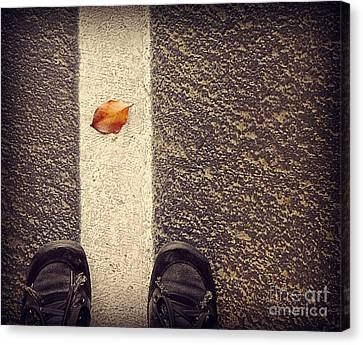 Canvas Print featuring the photograph Leaf On The Line by Meghan at FireBonnet Art