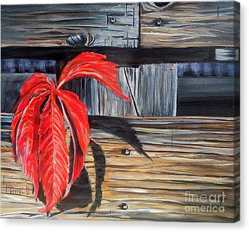 Leaf Shadow 2 Canvas Print by Marilyn  McNish