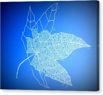 Leaf Study 1 Canvas Print by Cathy Jacobs