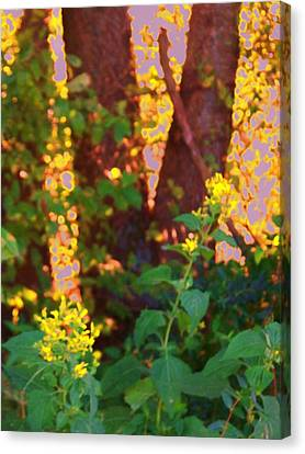 Leafy IIi Canvas Print by Shirley Moravec