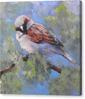 Leafy Perch Canvas Print by Jackie Simmonds