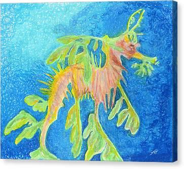 Leafy Seadragon Canvas Print by Tanya Hamell