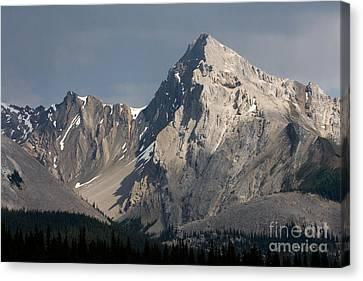 Canvas Print featuring the photograph Leah Peak Canada by Chris Scroggins