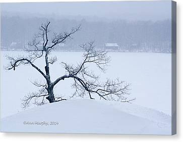 Canvas Print featuring the photograph Lean On Me by Ann Murphy