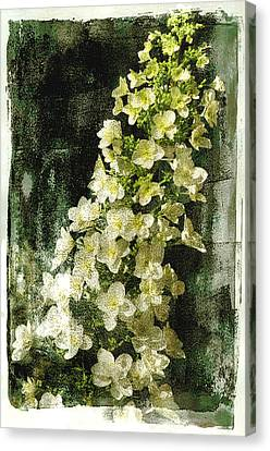Lean With Me Canvas Print by Davina Washington