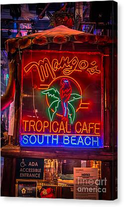 Leaning On Mango's South Beach Miami - Hdr Style Canvas Print by Ian Monk