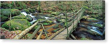 Leap Of Faith Broken Bridge, Becky Canvas Print by Panoramic Images