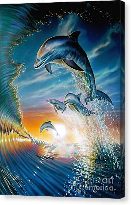 Agility Canvas Print - Leaping Dolphins by Adrian Chesterman
