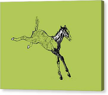 Leaping Foal Canvas Print