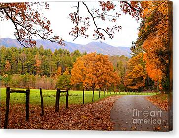 Canvas Print featuring the photograph Leaves A'fallin by Geraldine DeBoer
