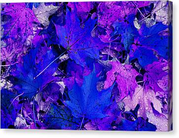 Canvas Print featuring the photograph Leaves by Aimee L Maher Photography and Art Visit ALMGallerydotcom