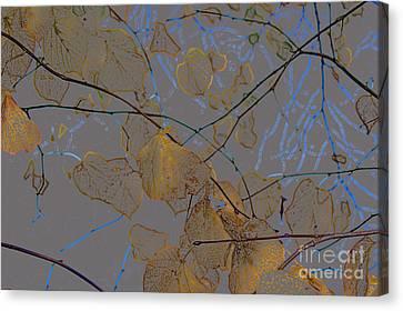 Leaves Canvas Print by Carol Lynch