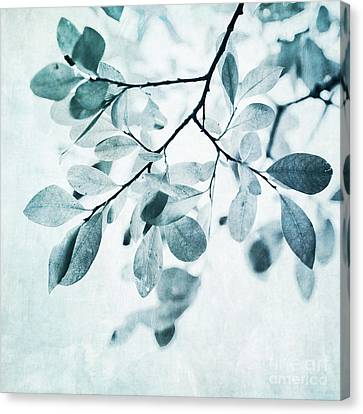 Leaves Canvas Print - Leaves In Dusty Blue by Priska Wettstein