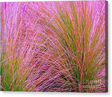Leaves Of Grass Canvas Print by Ann Johndro-Collins