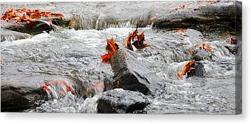 Leaves On Falling Water Canvas Print