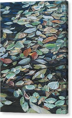 Leaves On Pond Canvas Print
