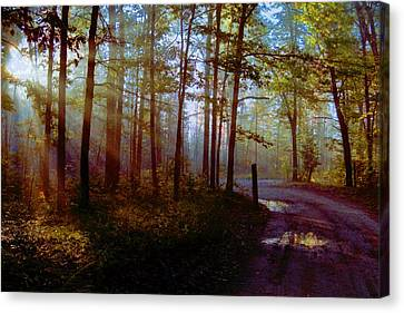 Canvas Print featuring the photograph Leaving... by Daniel Thompson