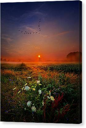 Leaving For New Horizons Canvas Print by Phil Koch