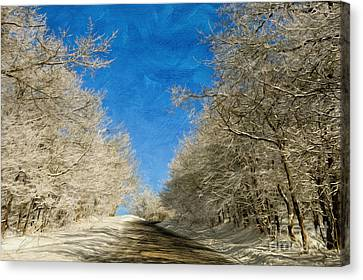 Leaving Winter Behind Canvas Print by Lois Bryan