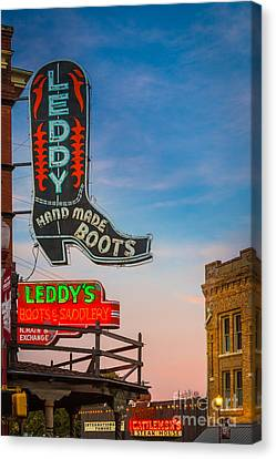 Leddy Boots Canvas Print by Inge Johnsson