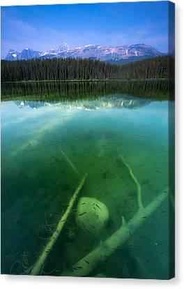 Leech Lake Canvas Print by Cale Best