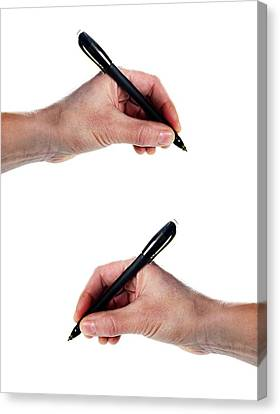 Brain Dominance Canvas Print - Left-handed And Right-handed Writing by Cordelia Molloy