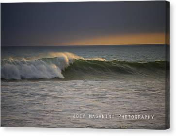 Left Canvas Print by Joey  Maganini