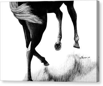 Left Turn Canvas Print by Kayleigh Semeniuk