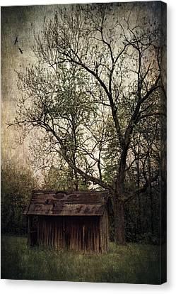 Left Untouched Canvas Print by Dale Kincaid