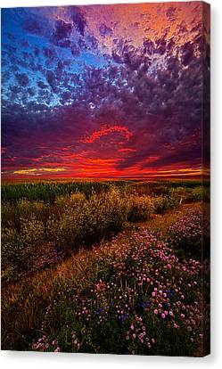 Left With The Memories Canvas Print by Phil Koch
