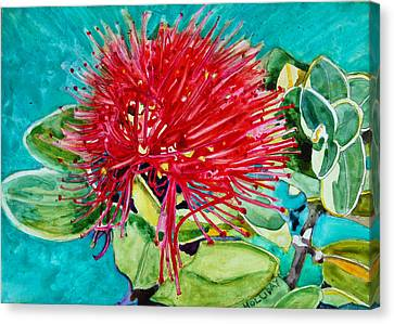 Lehua Blossom Canvas Print by Terry Holliday