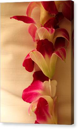Canvas Print featuring the photograph Lei  by Cathy Donohoue
