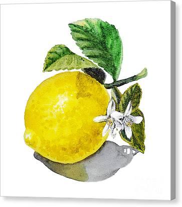 Lemon Flowers And Lemon Canvas Print by Irina Sztukowski