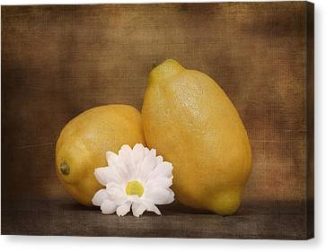 Lemon Fresh Still Life Canvas Print by Tom Mc Nemar