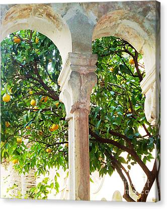 Lemon Tree Very Pretty				 Canvas Print