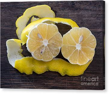 Lemon Zest Canvas Print by Frank Bach