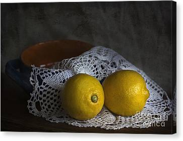 Sour Canvas Print - Lemons by Elena Nosyreva