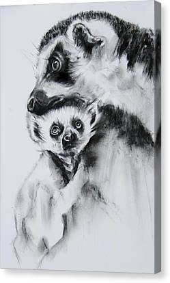 Lemurs  Canvas Print by Jean Cormier