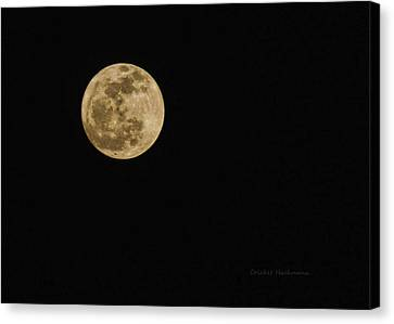 Lenten Moon Canvas Print by Cricket Hackmann