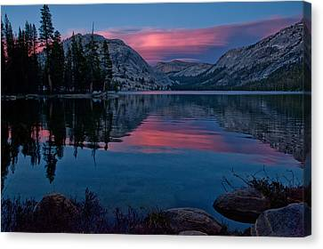 Lenticular Sunset At Tenaya Canvas Print by Cat Connor