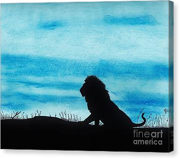 Leo At Sunset Canvas Print by D Hackett