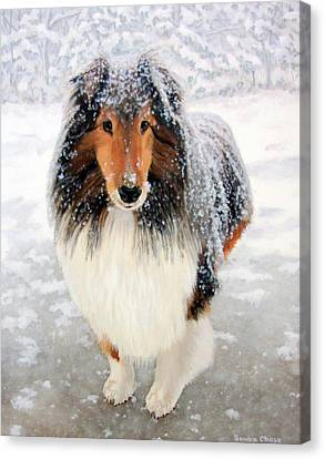 Leo In The Snow Canvas Print by Sandra Chase