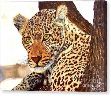 Leopard Point Of View Canvas Print