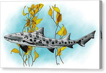 Leopard Shark Canvas Print by Roger Hall