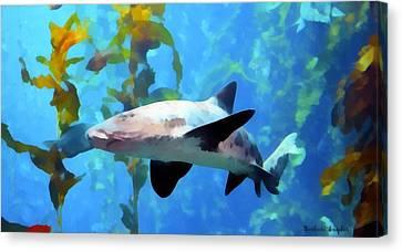 Leopard Shark Watercolor Canvas Print by Barbara Snyder