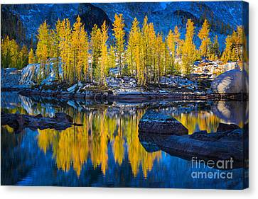 Leprechaun Tamaracks Canvas Print by Inge Johnsson